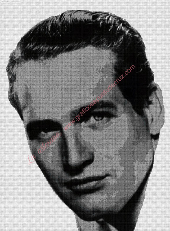 Paul Newman B/N