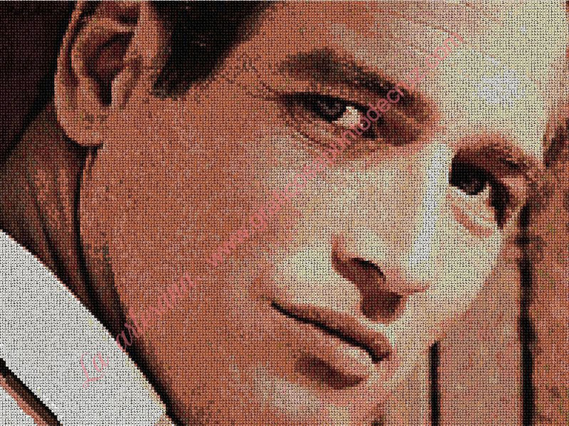Paul Newman, color