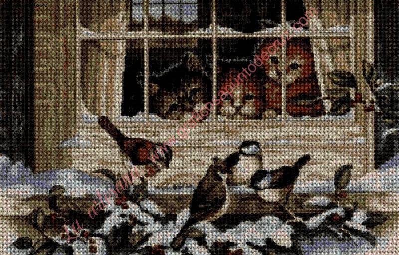 Gatitos tras la ventana